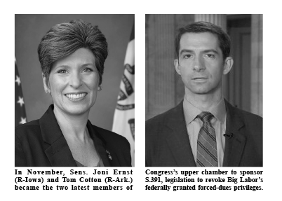 Joni-Ernst-(R-Iowa)-and-Tom-Cotton-(R-Ark.)