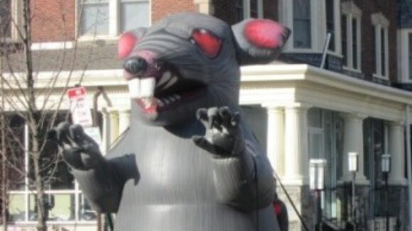 Rats Infiltrate Union Operated Restaurant