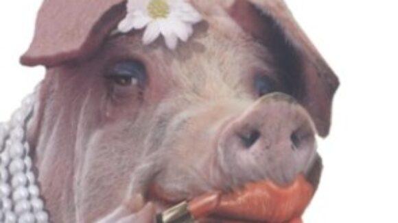 CBO:  End Big Labor's Bacon, Save $15.7 Billion