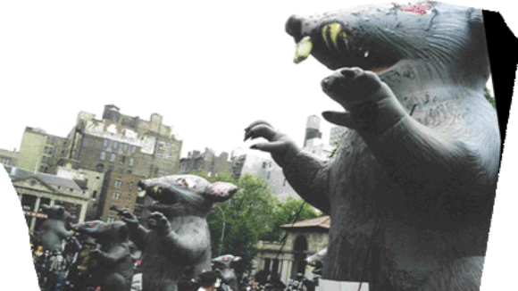 Big Labor to Retire Scabby the Rat?